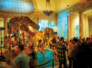 Looking for Friday fun? Try NHM First Fridays