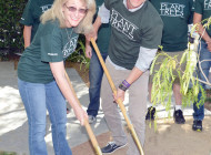 Tree planting celebrates Arbor Day in WeHo