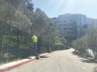 New fencing installed around Barnsdall Art Park