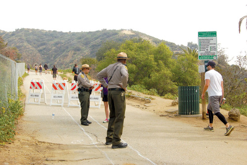 City officials will close the hiking trails in Runyon Canyon Park on April 1 for water pipe maintenance. (photo by Gregory Cornfield)