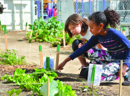 Gardening class plants seeds of knowledge