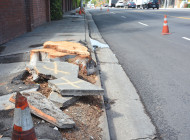 Los Angeles to iron out sidewalk problem