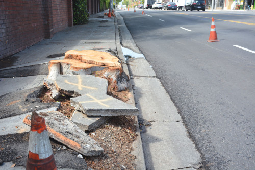 The Los Angeles City Council will consider a $1.3 billion plan to repair all the damaged sidewalks in the city. (photo by Patricia Sanchez)