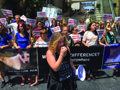 Members of Direct Action Everywhere protest for equality for all animals in Hollywood on Monday. (courtesy of Direct Action Everywhere)