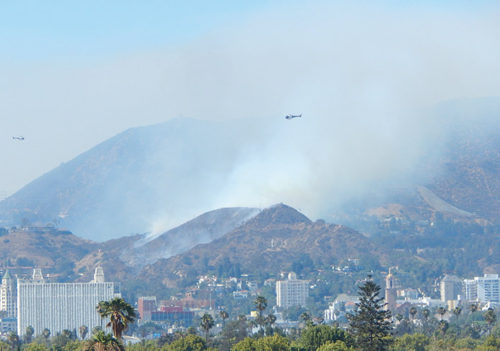 Helicopters circle the brush fire in the Hollywood Hills. It took hundreds of firefighters to put it out. (photo by Edwin Folven)