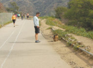 Runyon Canyon Park set to reopen
