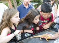 Zoo offers after-hours music and fun at 'Family Jam'