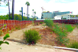 The vacant lot at 9900 Wilshire Blvd., adjacent to the Beverly Hilton Hotel, will be home to One Beverly Hills if the city council approves the plans. (photo by Gregory Cornfield)