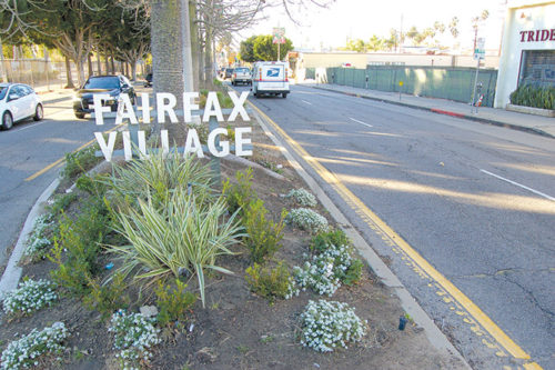 New landscaping and other improvements are coming to the medians on Fairfax Avenue. (photo by Luke Harold)