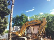 Ryu pursues potential Ellis Act regulation of demolition