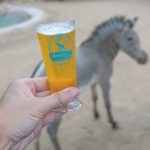 Beers and animals of all stripes will delight zoo-goers at Brew at the Zoo. (photo by Jamie Pham)