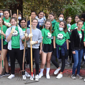 Students hauled mulch and spread it around the base of drought-stricken trees under the guidance of the Friends of Griffith Park. (photo courtesy Callie Webb/Immaculate Heart High School).