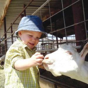 CMYK-sam-and-goat