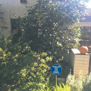 Some houses in the Miracle Mile have already taken additional safety measure by installing their own home security systems. (photo by Rebecca Villalpando)
