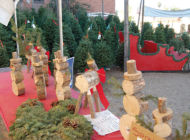 Wilshire Rotary Christmas tree lot supports local charities