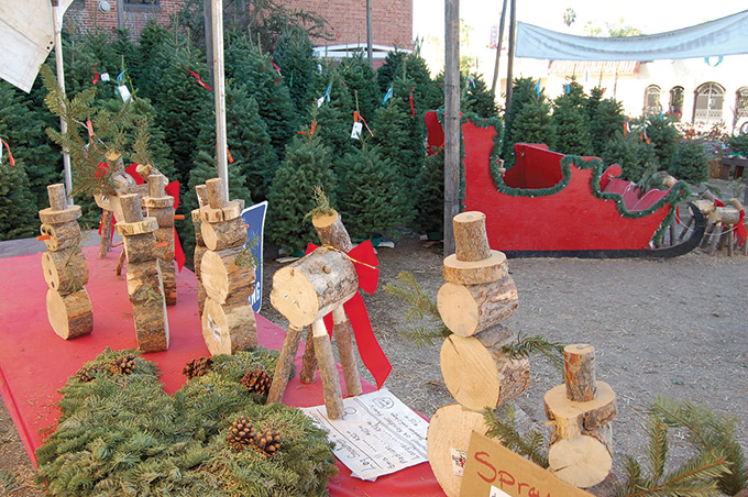 Wilshire Rotary Christmas tree lot supports local ...