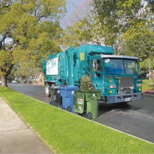 Residents are asked to place Christmas trees in curbside yard waste bins for pick-up and recycling, or to bring them to drop-off sites. (photo courtesy of LA Sanitation)