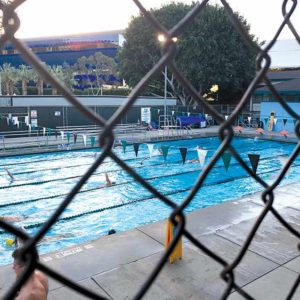 The West Hollywood Pool will stay open until the new aquatics center is ready for usage in West Hollywood Park. (photo by Crystal Duan)