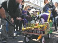 Laissez les bon temps rouler at the Farmers Market Mardi Gras parade