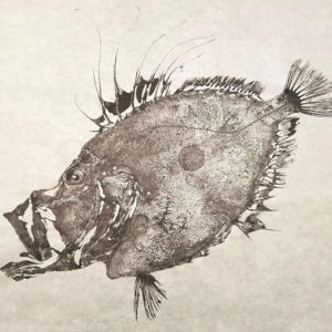 "Dwight Hwang's ""Matoudai,"" one of the many fish prints on display at the Japan Foundation, showcases the traditional gyotaku method of printmaking. (photo courtesy of the Japan Foundation)"