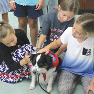 Students get hands-on instruction in the animal communication and behavior course, one of the many classes offered in Immaculate Heart Middle School's summer school program. (photo courtesy of Callie Webb/Immaculate Heart)