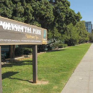 A strip of grass at the east end of Poinsettia Park is being considered for a community garden. (photo by Edwin Folven)