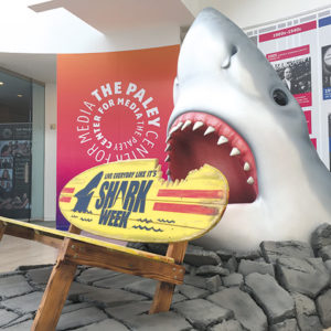 "Fans of ""Shark Week"" are invited to enjoy a new exhibit on the series at the Paley Center for Media. (photo courtesy of the Paley Center for Media)"
