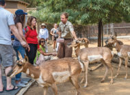 New tours offer rare glimpse into zoo life