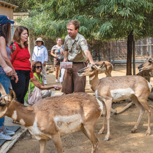 Guests can learn about nutritional needs and food preparation in the new Wild Adventures Behind the Scenes tour at the Los Angeles Zoo.  (photo courtesy of GLAZA/Jamie Pham)
