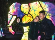 L.A. Zoo Lights nominated for travel award