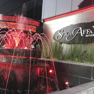 Spice Affair serves authentic and delicious Indian fare in an elegant atmosphere. (photo by Jill Weinlein)