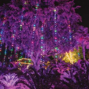 The Los Angeles Zoo received honors in 2015 and 2016 for its lights display, and was nominated again in 2017. (photo by Jamie Pham)