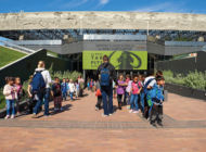 Nature Fest, day camps and mammoths come to the Natural History Museums this spring
