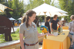 """Zookeepers displayed animals from the zoo during a preview for the """"Beastly Ball,"""" including a blue and gold macaw named Oscar. (photo by Edwin Folven)"""