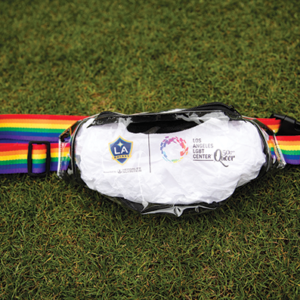 The L.A. LGBT Center has teamed up with LA Galaxy to celebrate Pride Night on June 2 at Dignity Health Sports Park in Carson. (photo courtesy of the Los Angeles LGBT Center)