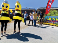 Don't worry, bee happy in Fillmore