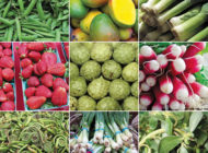What's in season at the Farmers Market