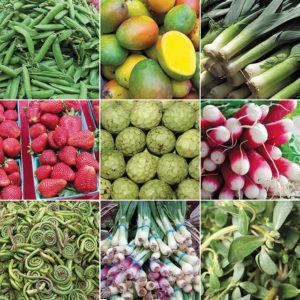 Sprin-gproduce
