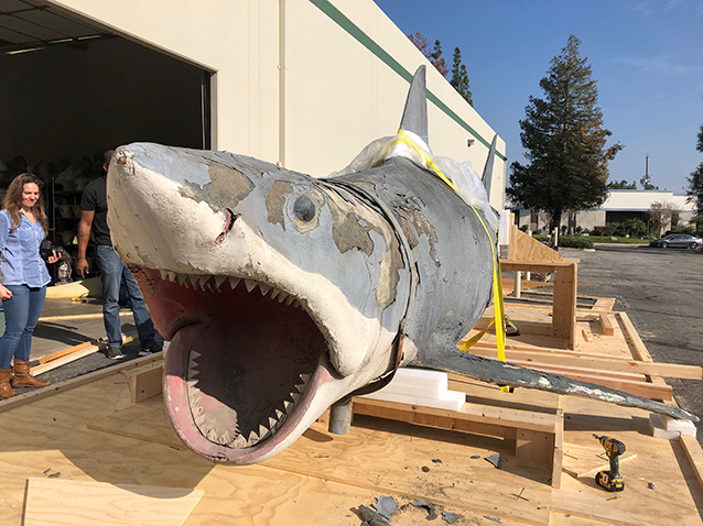 Front view of Bruce the shark prior to conservation by Greg Nicotero, KNB VFX and Academy Museum conservators. (photo by Greg Nicotero)