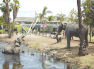 La Brea Tar Pits next on Museum Row revamp
