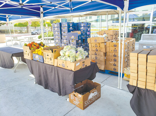 At a pop-up food pantry at Los Angeles City College on Sept. 5, students could get snacks and produce. (photo by Cameron Kiszla)