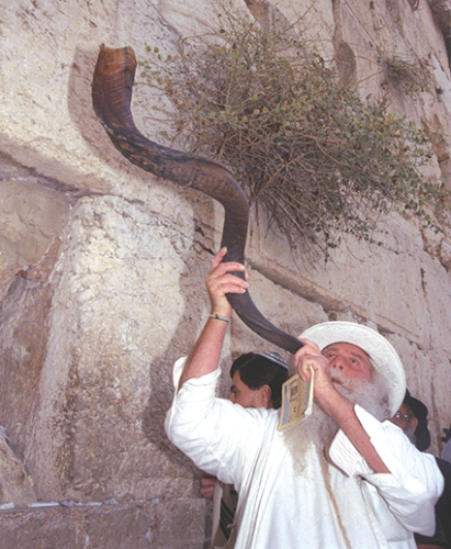 The blowing of a shofar, or ram's horn, is a Jewish tradition signaling the beginning of Rosh Hashanah. (photo courtesy of commons.wikimedia.org)