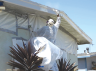 Board creates program for lead paint removal