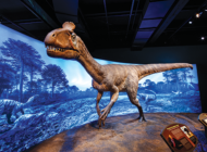Winter attractions open at Natural History Museum, Tar Pits