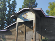 Log Cabin could face knockdown