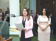 Council president gets warm welcome at Capitol