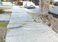 City seeks input on plans for sidewalk repair