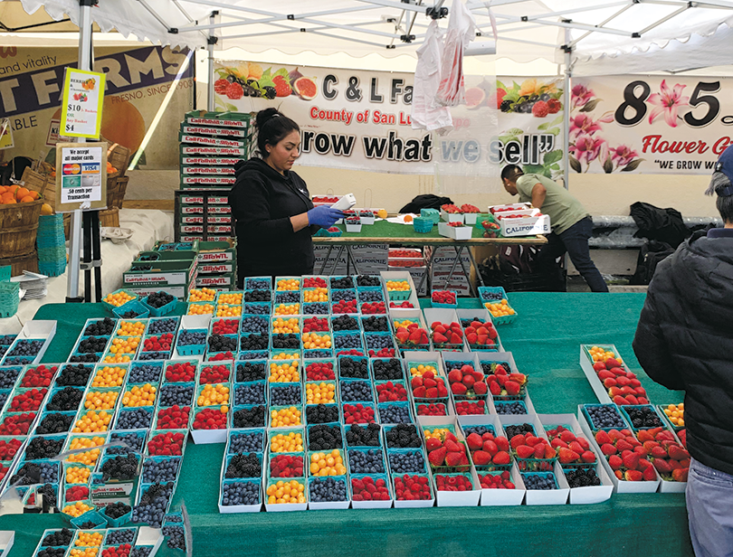 The Larchmont Farmers' Market is one of 22 markets operated by Raw Inspiration. (photo courtesy of Gary Gilbert)