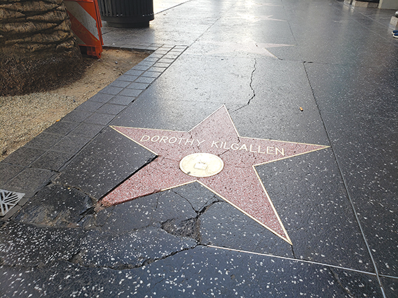 The plan to redesign the Walk of Fame would repair damaged stars and the surrounding terrazzo. (photo by Cameron Kiszla)