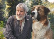 'The Call of the Wild' comes to El Capitan Theatre